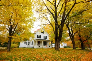 House-in-Autumn