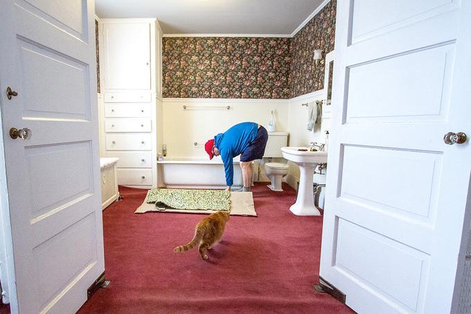bathroom-materials-carpet-standard_628301d07150f04bea1716f0830ffe78_680x454_q85
